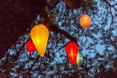 Papierlaternen-bunt-leuchtend-im-Baum-M