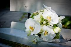 Brautstrauß-Orchideen-weiß-auf-Bank-weiß-M