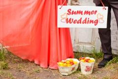 Summer-Wedding-Schild-+-Kleid-apricot-+-Früchte-L
