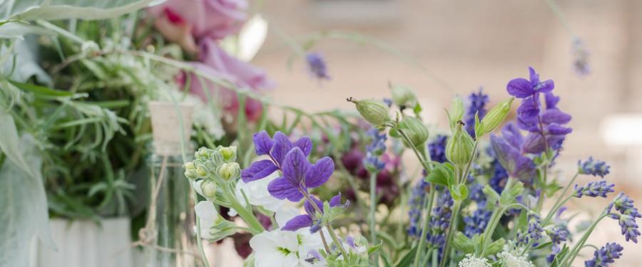 Lavendel by PinkPeanut